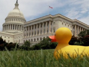 Scene from DecodeDC's explanation of a lame duck.
